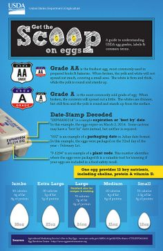 USDA guide to egg carton labeling and sizes. (The egg size in ounces is the total weight of a dozen eggs minus the carton. What's The Number, Food Science, Animal Science, Food Hacks, Food Tips, Food Ideas, Things To Know, No Cook Meals, New Recipes