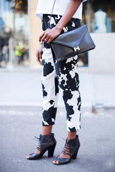// cow pants! (scdforr29)