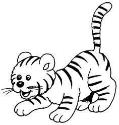136 Mejores Imagenes De Tigres Animales Salvajes Fotos De