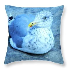 Seagull Contentedly Sitting On The Beach Throw Pillow featuring the digital art Proud Bird by Expressionistartstudio Priscilla-Batzell