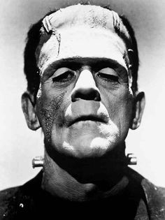 """Listen to me, Frankenstein. You accuse me of murder; and yet you would, with a satisfied conscience, destroy your own creature. Oh, praise the eternal justice of man!"" Frankenstein's Monster. Here the monster confronts Victor about abandoning him."