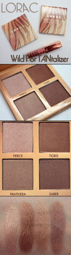 REALLY WANT IT :: Lorac Wild For TANtalizer Eye Shadow Palette (Summer 2012) :: 4 shimmer shades: Fierce (peachy/gold), Tigris (deep bronze), Panthea (golden taupe) & Saber (deep bronze-y/brown)