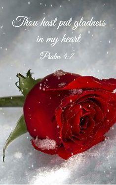 Psalm 4:7 King James KJV