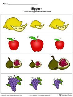 **FREE** Biggest Worksheet: Identify the Biggest Fruit in Color Worksheet.Help your preschooler learn and practice the concept of big, bigger, and biggest with this printable math worksheet.