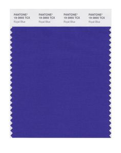 PANTONE SMART 19-3903X Color Swatch Card, Shale - Wall Decor Stickers - Amazon.com. Royal Blue.