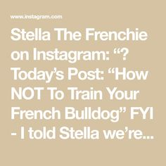 "Stella The Frenchie on Instagram: ""👉 Today's Post: ""How NOT To Train Your French Bulldog"" FYI - I told Stella we're going to the park to catch some 🐿's prior to this video.…"" Cute Puppy Videos, Cute Puppies, French Bulldog, Train, Park, Instagram, French Bulldog Shedding, Zug, Parks"