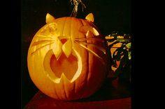Resultado de imagen para cat halloween - Real Time - Diet, Exercise, Fitness, Finance You for Healthy articles ideas Cat Pumpkin Carving, Halloween Pumpkin Stencils, Pumpkin Carving Contest, Pumpkin Carving Patterns, Halloween Mug, Halloween Treats, Halloween Pumpkins, Halloween Decorations, Pumpkin Pumpkin