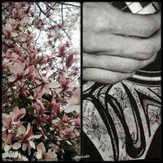 Same flower?