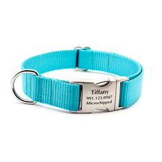 Tiffany Blue Webbing Dog Collar with Laser Etched Personalized Buckle