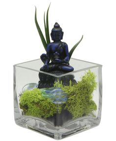 Glass terrarium is filled with multicolored moss and pebbles that add dynamism and color to the piece's blue Medicine Buddha statue.