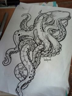 Octopus  drawing                                                                                                                                                     More