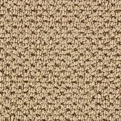 Martha Stewart Living - Mount Vernon Sisal Carpet - Per Sq. - - Home Depot Canada