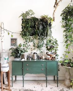 / sfgirlbybay green buffet in cafe with living wall created with plants. Home Coffee Stations, Wall Decor, Room Decor, Indoor Plants, Hanging Plants, Interior Inspiration, Garden Inspiration, Interior And Exterior, Living Spaces