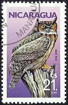 "Buho Real from the series ""Birds"",stamp printed in Nicaragua , circa 1986"