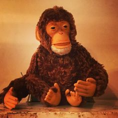"""#vintagejockomonkey #showyoursteiff @steiffusa #steifftradition #christmassteifftradition #hugejocko #myfavorite #monkeytradition"" from @mtnartlady"