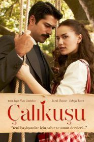 Çalikuşu aka Lovebird is an historical romantic drama series based on a novel of the same name set in Istanbul at the beginning of the twentieth century. Audio Latino, Becoming A Teacher, Lost In Translation, Kindred Spirits, Drama Queens, Twin Sisters, Online Gratis, Film Serie, Together We Can