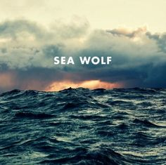 Reminds me of the big sur Sea Wolf | album artwork