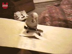 Skater Birdie