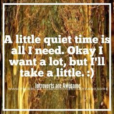 Introvert's needs