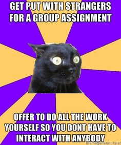 Anxiety Cat, better known as myself.  Or because I'm so OCD about my assignments that I want them done perfectly.  And correctly.  And I don't trust anyone else but myself.