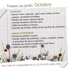 travaux-octobre-jardin Planter Ail, Gardens, Bulbs, Succulents Garden, Perennial Plant, Potager Garden, October, Ornament