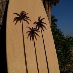 Pintail Palm