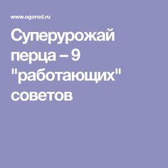 """Суперурожай перца – 9 """"работающих"""" советов"""