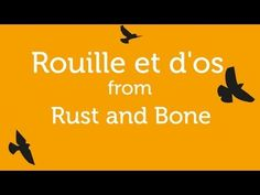 Rouille et d'os from Rust and Bone Soundtrack Salmon Fishing, Film Awards, Happy Endings, Soundtrack, Album, Itunes, Rust, Youtube, Apple