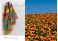 Marigold Hill - Mohair throw by Hinterveld Mohair Blanket, Mohair Throw, Marigold, Home Collections, Tie Dye Skirt, Snug, Blankets, Colours, Inspiration