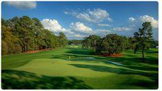 """Im Augusta National Golf Club in Augusta/Georgia wird seit Donnerstag wieder Golf gespielt. Und zur richtigen Einstimmung gab es einen kurzen Beitrag hier im Blog und bereits einen Podcast. Die erste Runde könnt Ihr Euch gerne hier noch mal anhören oder hier """"nachlesen"""".   #Augusta #Bernhard Langer #Golf #Martin #Kaymer #Masters #Podcast"""