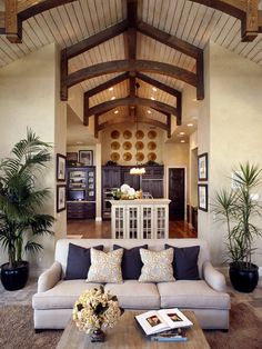 Traditional Family Room Design, Pictures, Remodel, Decor and Ideas - page 6