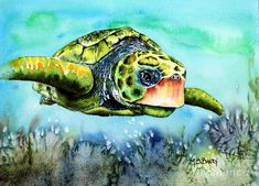Turtle Painting - Green Turtle by Maria Barry Sea Turtle Painting, Sea Turtle Art, Watercolor Animals, Watercolor Print, Watercolor Paintings, Animal Paintings, Big Eyes Paintings, Green Turtle, Sea World