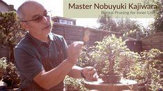 174) Bonsai Masterclass: Summer Bonsai Pruning for Inner Growth with Mas...