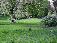 27 Best English Gardens Images On Pinterest