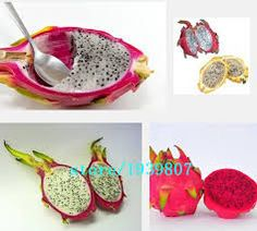 Diferentes variedades de Pitaya podem ser consumidas in natura.