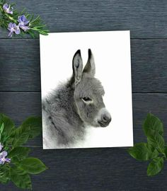Donkey Art Print, Nursery Animal Art, Donkey Painting, Nursery Decor, Donkey Poster, Donkey Wall Art, Safari Nursery Art, Animal Wall  Art