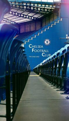 Chelsea Stadium, Chelsea Football, Chelsea Fc Players, Chelsea Fans, Stadium Wallpaper, Football Wallpaper, Chelsea Fc Wallpaper, Stamford Bridge, Sports Images