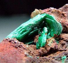 Chalcophyllite - Ting-Tang Mine, Gwennap, Cornwall, United Kingdom.jpg