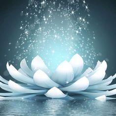 La sabiduría del silencio: Aprende a meditar en 4 pasos