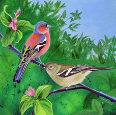 A painting made by me of two chaffinches perched on the branch of an apple tree
