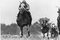 Jockey Ron Turcotte rides Secretariat, 99th Kentucky Derby on May 5, 1973