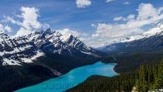 https://earthporn.co/sightseeing/north-america/canada/lake-peyto-alberta.jpg