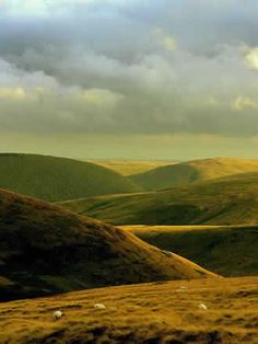 """Cheviot Hills, Northumberland, ENG - The Border Reivers """"...are famous for theeving; they are all bred up and live by theft.  They come down fm these dales into the low countries & carry away horses & cattell so cunningly, that it will be hard for any to get them or their cattell, except they be acquainted w/ some master thiefe..."""" - William Gray in 1649, Chorographia"""