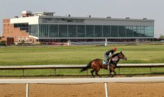 Racecourse Directory : A Brief History of Equine Racing at Thistledown Ra...
