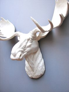 Faux Taxidermy Moose Head Wall Hanging Wall Decor by mahzerandvee