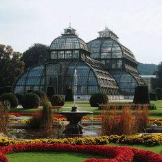 Serre du château de Schönbrunn. Dans le parc, porte d'Hietzing. Tlj de 9h30 - 17 ou 18h. 5€/ adulte.