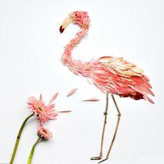 FLOWER PETAL BIRDS