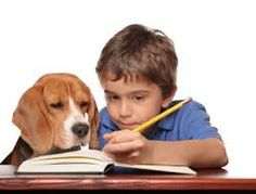 essay writing for beginning name worksheets