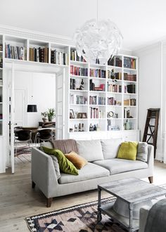Living roo with bookshelves