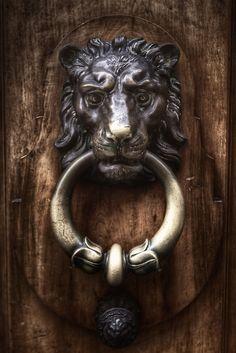 Lion Door Knocker in Geneva, Switzerland Lion Door Knocker, Door Knobs And Knockers, Knobs And Handles, Door Handles, Cool Doors, Unique Doors, Door Detail, Door Accessories, Door Furniture